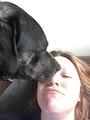 Lora's place dog boarding & pet sitting