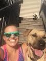 Cammie's Pet Sitting dog boarding & pet sitting