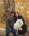 Pet Pleasures by Sara dog boarding & pet sitting