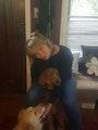 Katia's Pet Hotel dog boarding & pet sitting