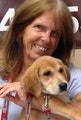 Classy Country Canines dog boarding & pet sitting