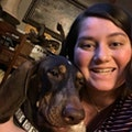 Jacqui's Doggie Care dog boarding & pet sitting