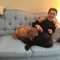 Marcella's South Philly Pooch Pad dog boarding & pet sitting