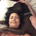Karen and Moe's Doggie Stay Bedford dog boarding & pet sitting