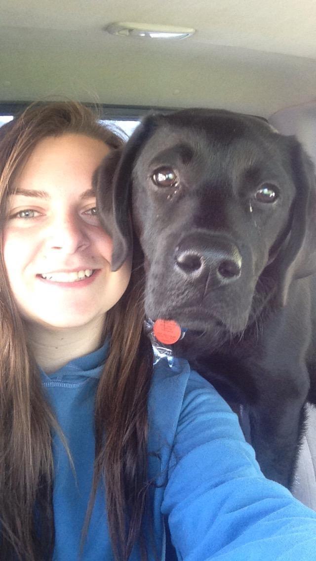 Carla's dog boarding