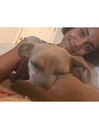 Jasmine: experienced dog watcher dog boarding & pet sitting