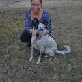 Paw O' Paws Dog Care dog boarding & pet sitting
