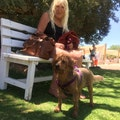 Rachel best dog care in spring vall dog boarding & pet sitting