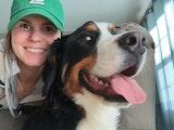 Baileys Buddies dog boarding & pet sitting