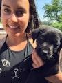 Cynthia - Liberty Village dog boarding & pet sitting