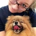 Izzy's Dog Care dog boarding & pet sitting