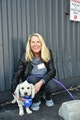 Mama H's doggy daycare dog boarding & pet sitting