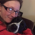 Cheryl`s Pet Care dog boarding & pet sitting
