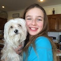 Abby's Doggie Stay Overland Park dog boarding & pet sitting