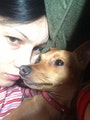 Bark for Ana dog boarding & pet sitting