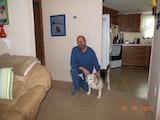 dog carefully dog boarding & pet sitting