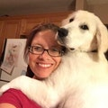 Dog-Loving Family: Lots of cuddles! dog boarding & pet sitting