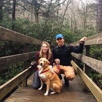 Natalie & Anthony's dog boarding