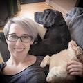 Muttley's Pet Center dog boarding & pet sitting