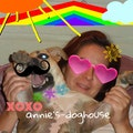 annie's-doghouse dog boarding & pet sitting