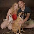 DoGgiE LoVe!!!!! dog boarding & pet sitting