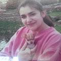 Jackie's Pets Paradise dog boarding & pet sitting