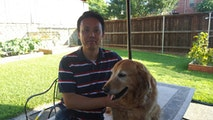 K-9 Petsitting Services dog boarding & pet sitting