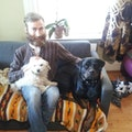 FreeRange environment +walks dog boarding & pet sitting