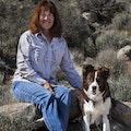 K-9 Ranch Vacation dog boarding & pet sitting