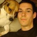 Fetching Inn dog boarding & pet sitting