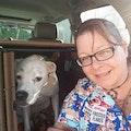 Auntie Beth's Pet Service dog boarding & pet sitting