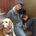 Doggytopia dog boarding & pet sitting