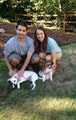 Puppy Haven! dog boarding & pet sitting