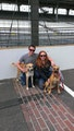 Friendly Pups with Big Fenced Yard! dog boarding & pet sitting