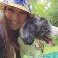 Emily's Doggy DayCare dog boarding & pet sitting