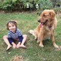 Best Vacay! Large Yard + 24/7 Care! dog boarding & pet sitting