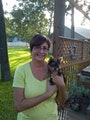 Tiny Paws Pet Nanny - Crosby dog boarding & pet sitting