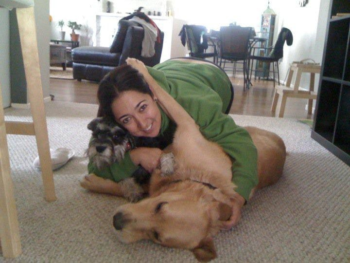 Marisol's dog boarding