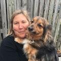 Fairlington Villages Chateau Chien dog boarding & pet sitting