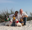 The Irish Sitters, LLC dog boarding & pet sitting