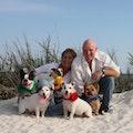 The Irish Sitters, LLC dog boarding & pet sitting