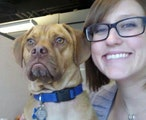A Pooch Play Palace in Englewood! dog boarding & pet sitting