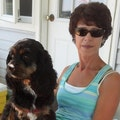 Bev & Bailey's Country Re-TREAT dog boarding & pet sitting