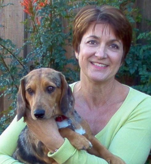 Sheri's dog day care