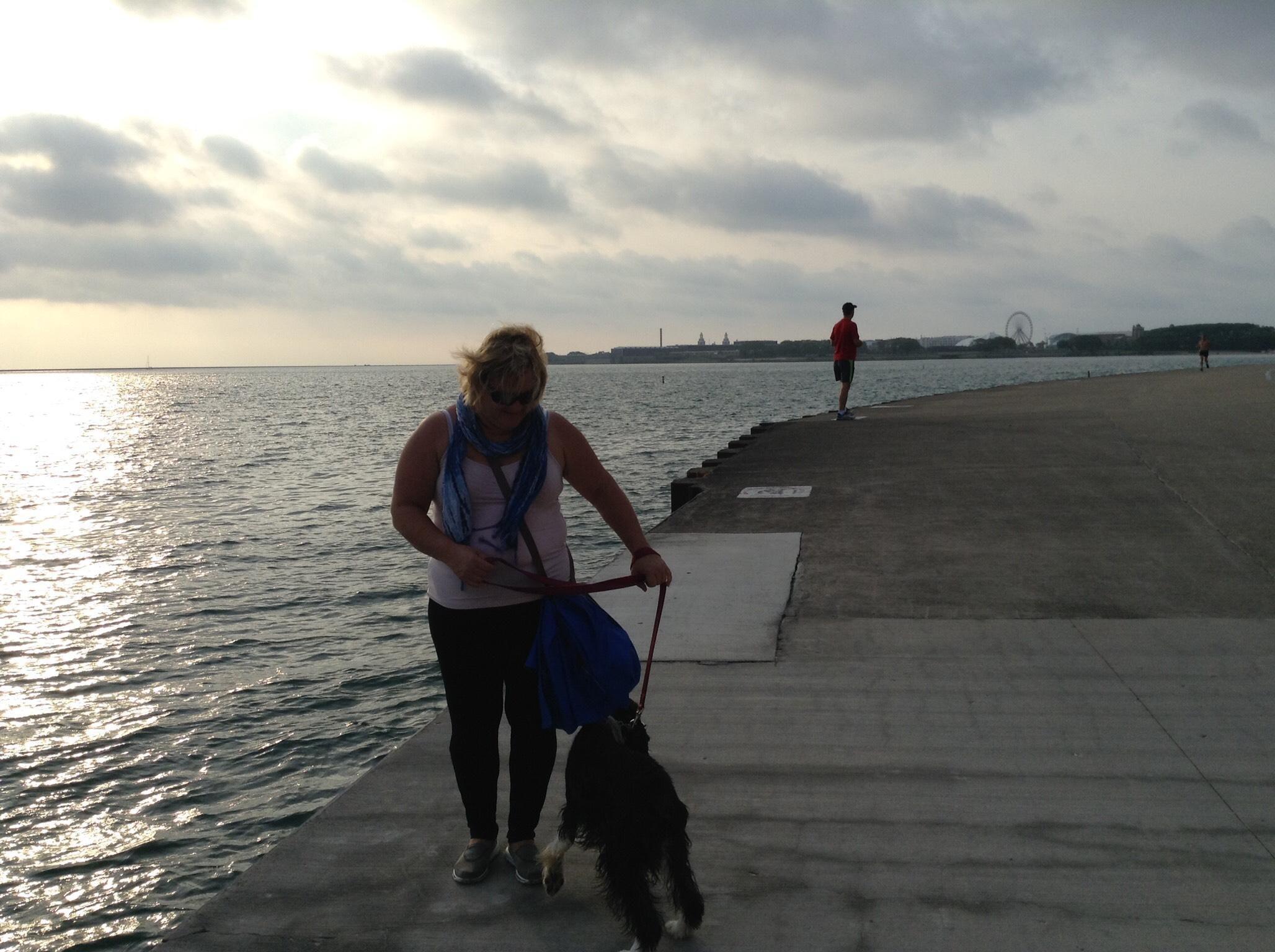 Carol's dog boarding