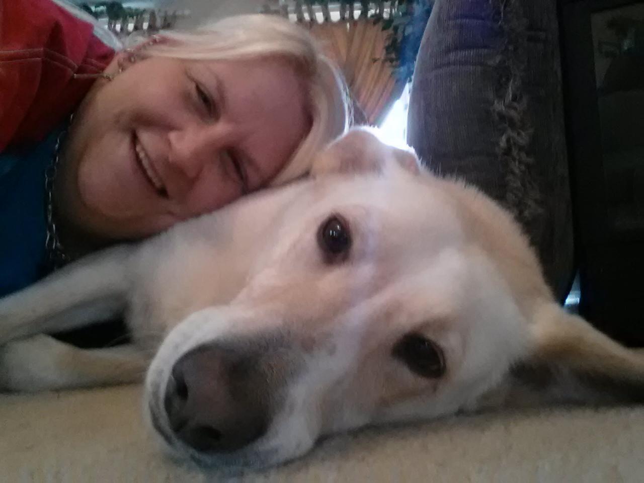Tawny's dog boarding