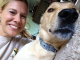 Kim's Canine Crib dog boarding & pet sitting