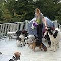 Woof Woof overnight stay dog boarding & pet sitting