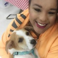 Paw-sitively Heaven dog boarding & pet sitting