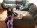 Perfect Pet Partner dog boarding & pet sitting